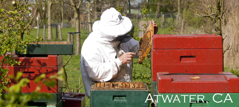 beekeeping-products-api-holdings